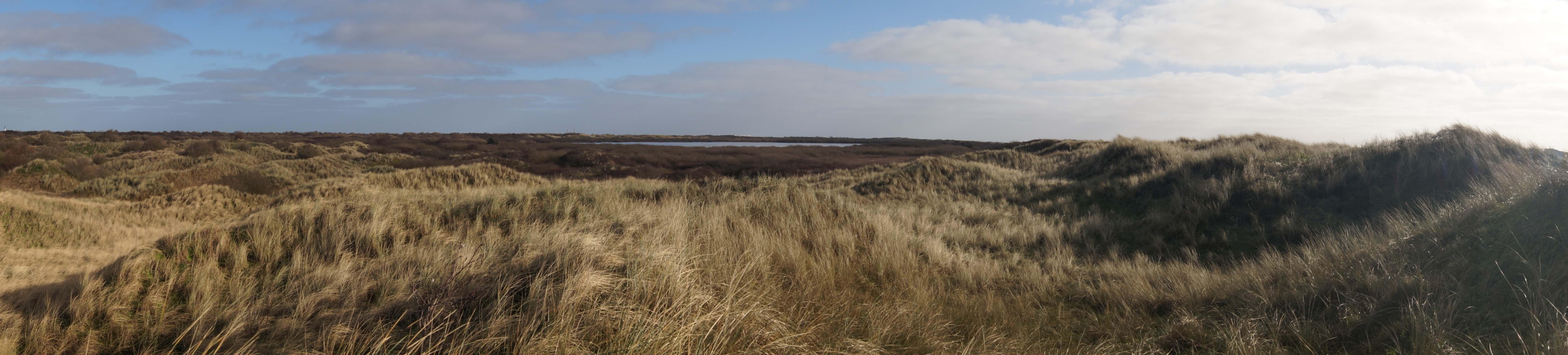 De duinen bij de Horsmeertjes in het zuiden van Texel