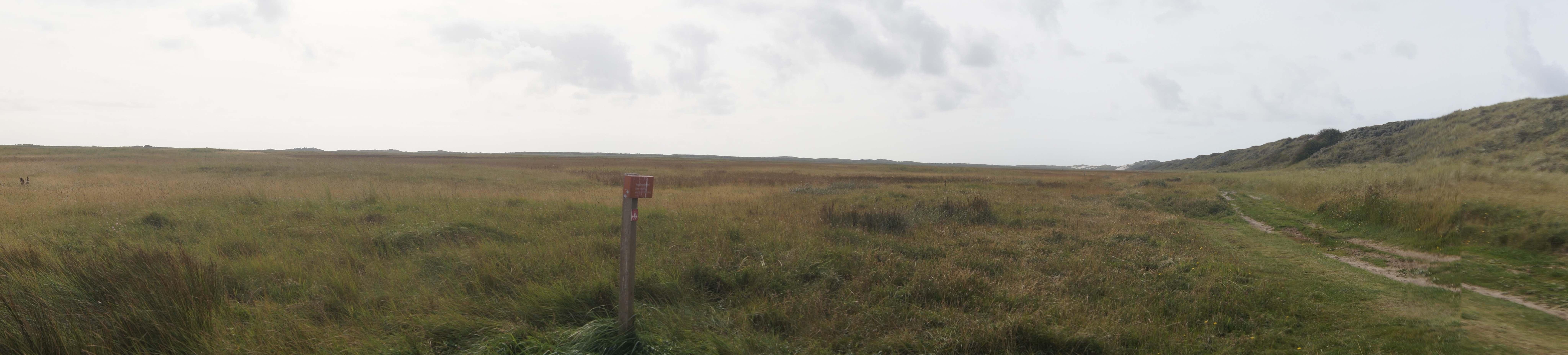 Het Oerd, het grote natuurgebied in het noordwesten van Terschelling